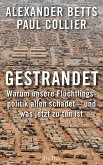 Gestrandet (eBook, ePUB)