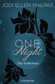 Das Geheimnis / One Night Bd.2 (eBook, ePUB)