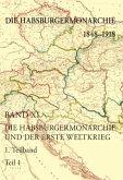 Die Habsburgermonarchie und der Erste Weltkrieg, 2Teilbände / Die Habsburgermonarchie 1848-1918 .11