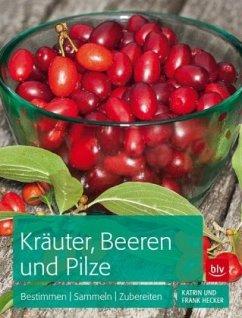 Kräuter, Beeren und Pilze (Mängelexemplar)