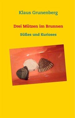 Drei Mützen im Brunnen (eBook, ePUB)