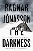 The Darkness (eBook, ePUB)