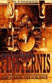 Finsternis (eBook, ePUB)