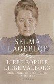 Liebe Sophie - Liebe Valborg (eBook, ePUB)