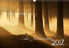 9783665587864 - Burger, Jochen: Im Lichtglanz der Jahreszeiten (Wandkalender 2017 DIN A3 quer) - Buch