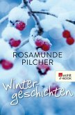 Wintergeschichten (eBook, ePUB)