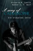 A song of Catastrophe (eBook, ePUB)