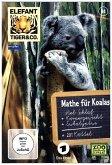 Elefant, Tiger & Co. - Mathe für Koalas, DVD