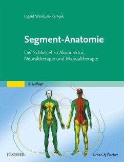 Segment-Anatomie - Wancura-Kampik, Ingrid