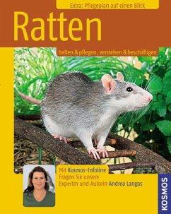 Ratten (Mängelexemplar)