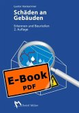 Schäden an Gebäuden (eBook, PDF)