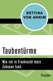 Taubentürme (eBook, ePUB)
