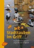 Stadttauben im Griff (eBook, PDF)