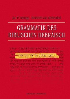 Grammatik des Biblischen Hebräisch - Lettinga, Jan P.