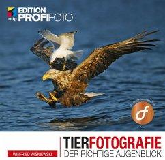 Tierfotografie - Wisniewski, Winfried