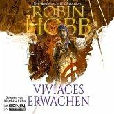 Viviaces Erwachen / Zauberschiff Chroniken Bd.2