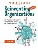 Reinventing Organizations visuell (eBook, PDF)