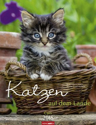 katzen auf dem lande kalender 2018 von jean louis klein. Black Bedroom Furniture Sets. Home Design Ideas