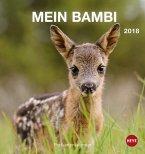 Rehkitz - Mein Bambi Postkartenkalender 2018