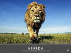 Edition Humboldt - Afrika 2018