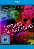 Spring Awaking - Rebellion der Jugend