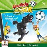 Labrador, noch ein Tor! / Teufelskicker Hörspiel Bd.66 (1 Audio-CD)