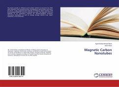 Magnetic Carbon Nanotubes