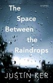 The Space Between the Raindrops (eBook, ePUB)