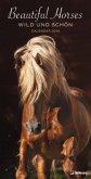 Beautiful Horses 33 x 64 Slim Poster Calendar 2018