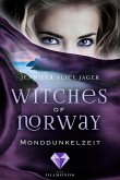 Monddunkelzeit / Witches of Norway Bd.3 (eBook, ePUB)