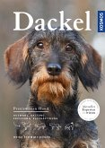 Dackel (eBook, ePUB)