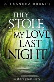 They Stole My Love Last Night (eBook, ePUB)