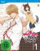 Wolf Girl & Black Prince - Vol. 1 - Episoden 1-4