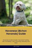 Havanese (Bichon Havanais) Guide Havanese Guide Includes: Havanese Training, Diet, Socializing, Care, Grooming, Breeding and More