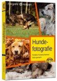 Hundefotografie - Perfekte Hundeaufnahmen leicht gemacht.