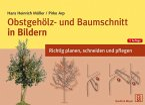 Obstgehölz- und Baumschnitt in Bildern