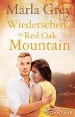 Wiedersehen in Red Oak Mountain (eBook, ePUB)