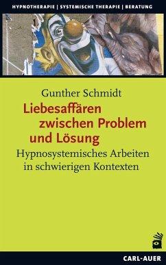 Liebesaffären zwischen Problem und Lösung - Schmidt, Gunther
