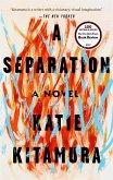 A Separation (eBook, ePUB)