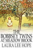 Bobbsey Twins at Meadow Brook (eBook, ePUB)