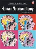Human Neuroanatomy (eBook, PDF)