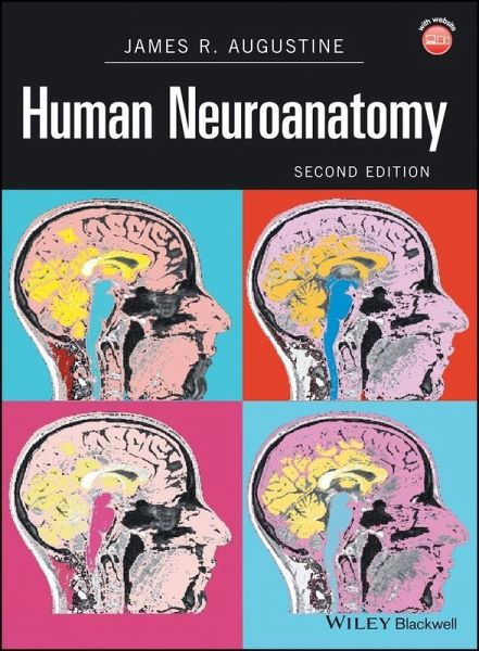 Human neuroanatomy ebook pdf von james r augustine portofrei human neuroanatomy ebook pdf von james r augustine portofrei bei bcher fandeluxe Images