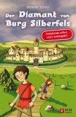 Der Diamant von Burg Silberfels (eBook, ePUB)