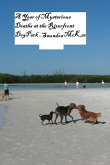 A Year of Mysterious Deaths at the Riverfront Dog Park (eBook, ePUB)
