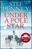 Under a Pole Star (eBook, ePUB)