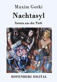 Nachtasyl (eBook, ePUB)