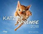 Katzensprünge 2018