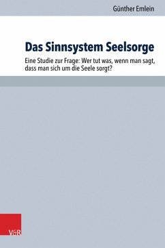 Das Sinnsystem Seelsorge (eBook, PDF)