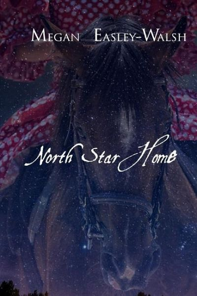 North Star Home - Easley-Walsh, Megan