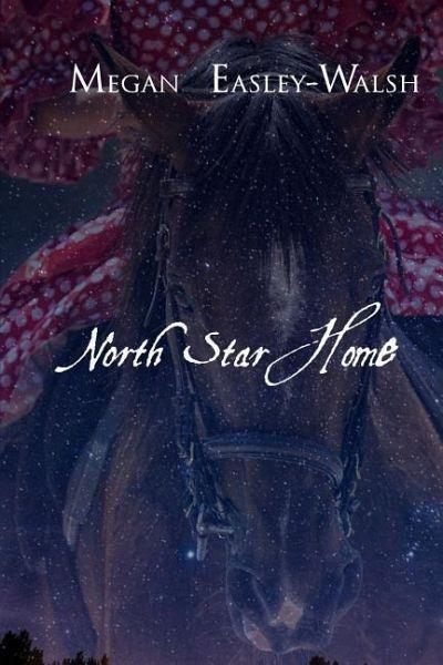NORTH STAR HOME - Easley-Walsh, Megan